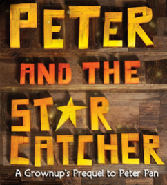 image from peterandthestarcatcher.com